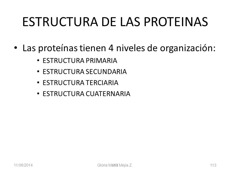 11/06/2014 Gloria Maria Mejia Z. 113 ESTRUCTURA DE LAS PROTEINAS Las proteínas tienen 4 niveles de organización: ESTRUCTURA PRIMARIA ESTRUCTURA SECUND