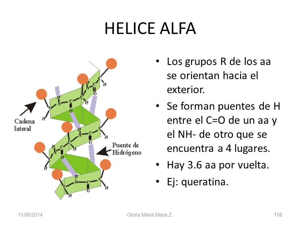 11/06/2014 116 Gloria Maria Mejia Z.116 HELICE ALFA Los grupos R de los aa se orientan hacia el exterior. Se forman puentes de H entre el C=O de un aa