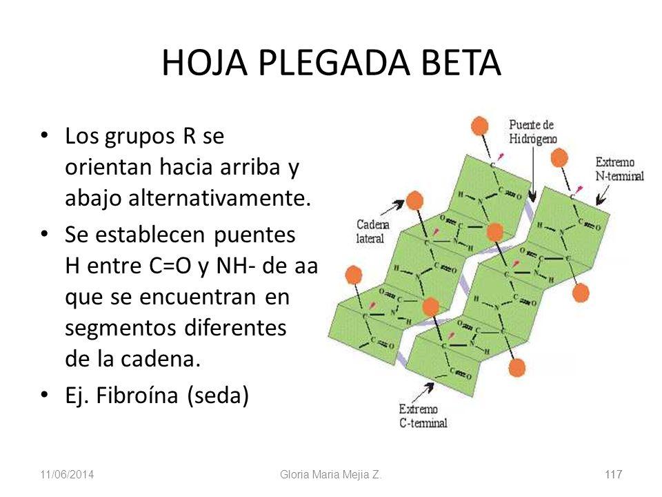 11/06/2014 117 Gloria Maria Mejia Z.117 HOJA PLEGADA BETA Los grupos R se orientan hacia arriba y abajo alternativamente. Se establecen puentes H entr