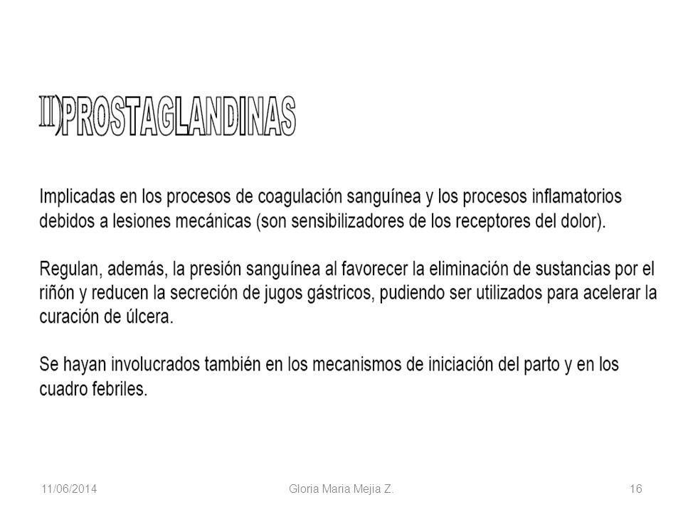 11/06/2014 Gloria Maria Mejia Z. 16