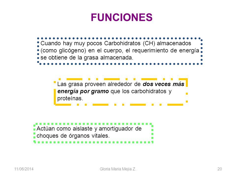 11/06/2014 Gloria Maria Mejia Z. 20 Cuando hay muy pocos Carbohidratos (CH) almacenados (como glicógeno) en el cuerpo, el requerimiento de energía se