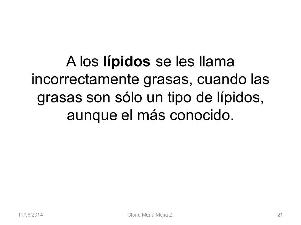 11/06/2014 Gloria Maria Mejia Z. 21 A los lípidos se les llama incorrectamente grasas, cuando las grasas son sólo un tipo de lípidos, aunque el más co