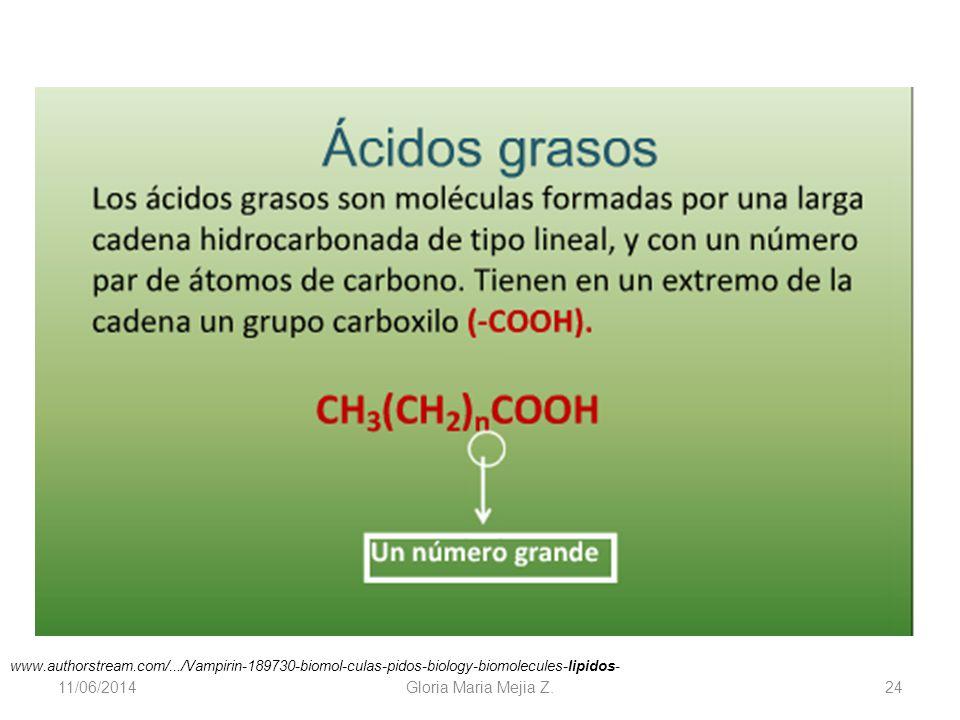 11/06/2014 Gloria Maria Mejia Z. 24 www.authorstream.com/.../Vampirin-189730-biomol-culas-pidos-biology-biomolecules-lipidos-