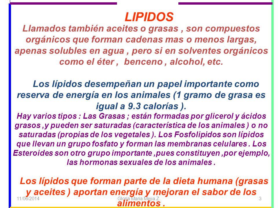 11/06/2014 Gloria Maria Mejia Z. 3 Llamados también aceites o grasas, son compuestos orgánicos que forman cadenas mas o menos largas, apenas solubles