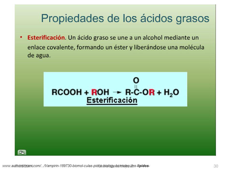 11/06/2014 Gloria Maria Mejia Z. 30 www.authorstream.com/.../Vampirin-189730-biomol-culas-pidos-biology-biomolecules-lipidos-