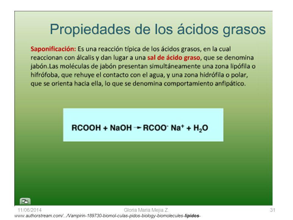 11/06/2014 Gloria Maria Mejia Z. 31 www.authorstream.com/.../Vampirin-189730-biomol-culas-pidos-biology-biomolecules-lipidos-