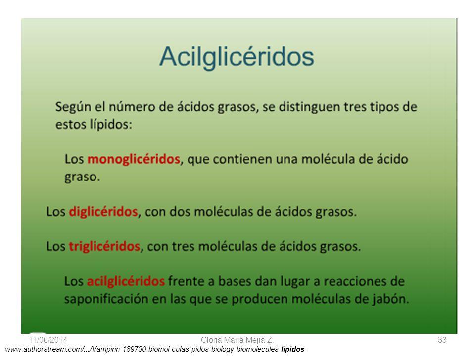 11/06/2014 Gloria Maria Mejia Z. 33 www.authorstream.com/.../Vampirin-189730-biomol-culas-pidos-biology-biomolecules-lipidos-