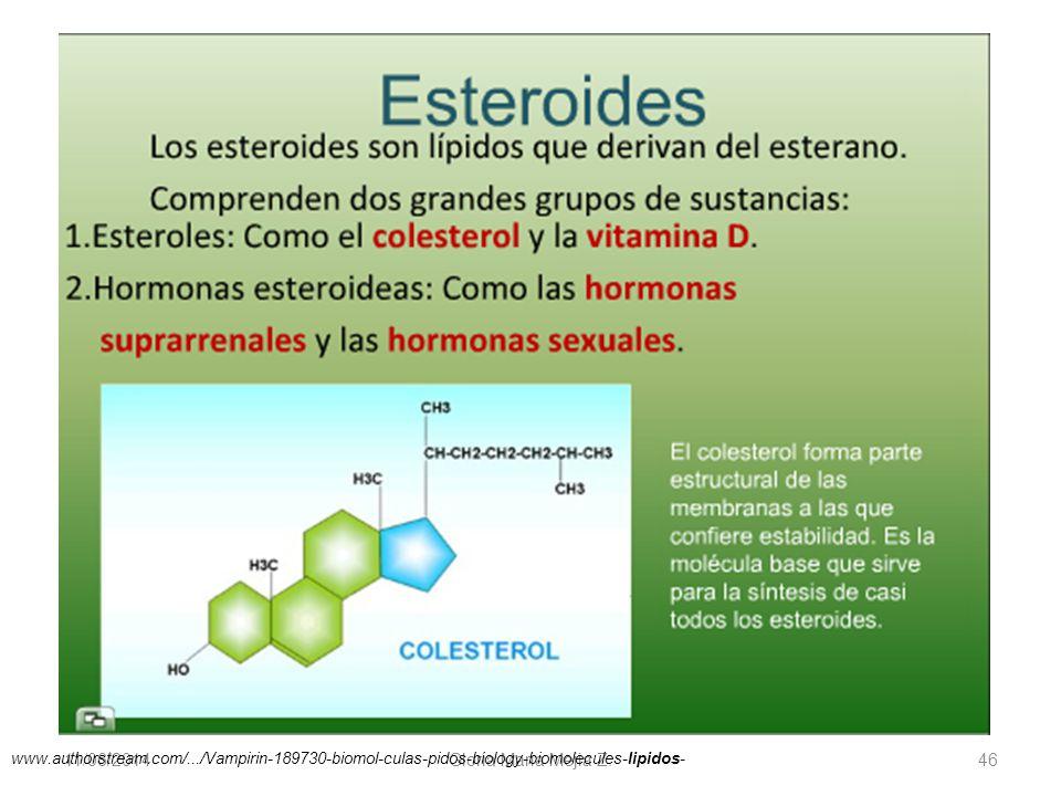 11/06/2014 Gloria Maria Mejia Z. 46 www.authorstream.com/.../Vampirin-189730-biomol-culas-pidos-biology-biomolecules-lipidos-