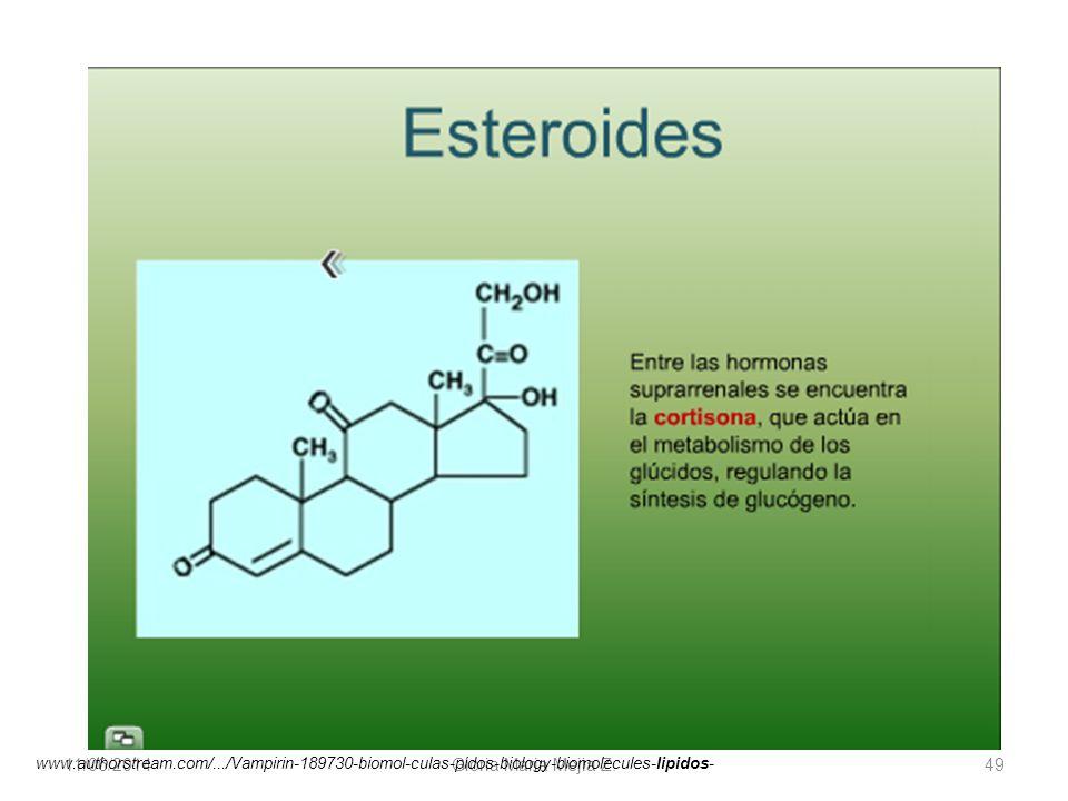 11/06/2014 Gloria Maria Mejia Z. 49 www.authorstream.com/.../Vampirin-189730-biomol-culas-pidos-biology-biomolecules-lipidos-