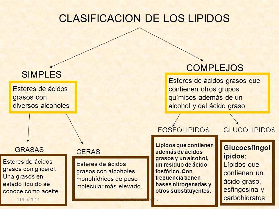 11/06/2014 Gloria Maria Mejia Z. 5 CLASIFICACION DE LOS LIPIDOS SIMPLES COMPLEJOS GRASAS CERAS FOSFOLIPIDOSGLUCOLIPIDOS Esteres de ácidos grasos con d