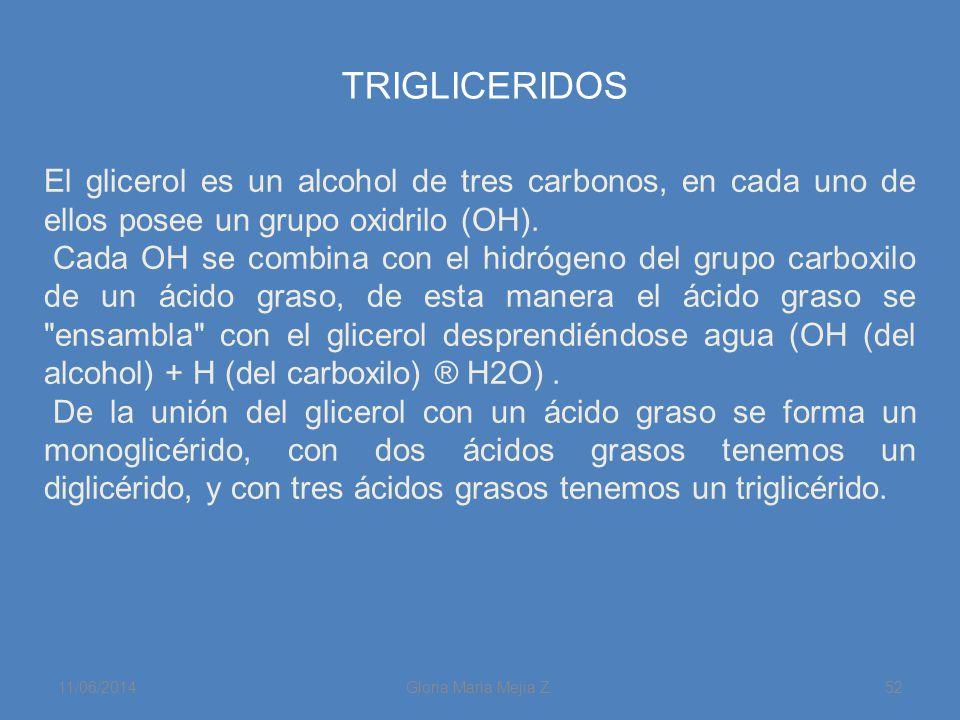 11/06/2014 Gloria Maria Mejia Z. 52 TRIGLICERIDOS El glicerol es un alcohol de tres carbonos, en cada uno de ellos posee un grupo oxidrilo (OH). Cada