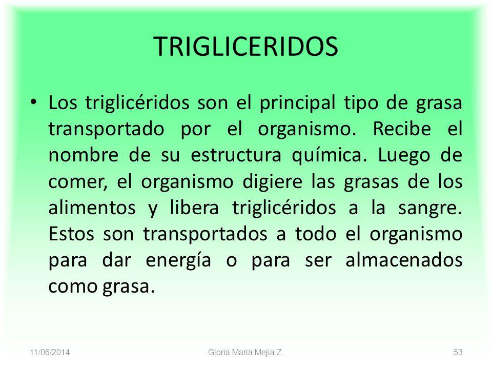 11/06/2014 Gloria Maria Mejia Z. 53 TRIGLICERIDOS Los triglicéridos son el principal tipo de grasa transportado por el organismo. Recibe el nombre de