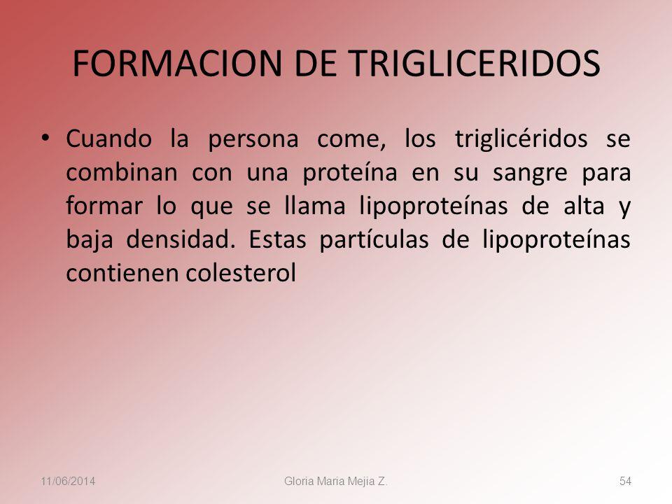 11/06/2014 Gloria Maria Mejia Z. 54 FORMACION DE TRIGLICERIDOS Cuando la persona come, los triglicéridos se combinan con una proteína en su sangre par