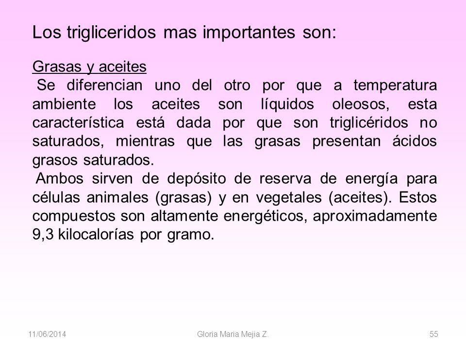 11/06/2014 Gloria Maria Mejia Z. 55 Los trigliceridos mas importantes son: Grasas y aceites Se diferencian uno del otro por que a temperatura ambiente