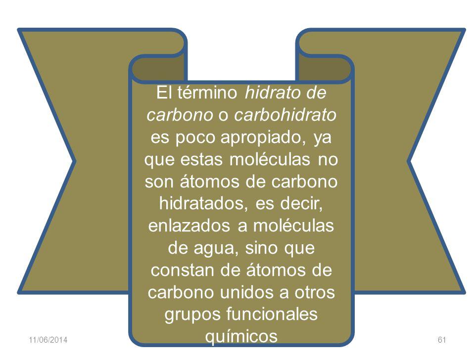 11/06/2014 Gloria Maria Mejia Z. 61 El término hidrato de carbono o carbohidrato es poco apropiado, ya que estas moléculas no son átomos de carbono hi