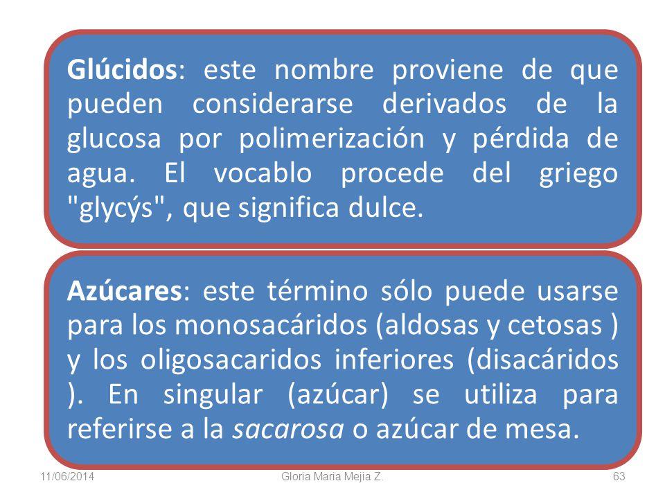 11/06/2014 Gloria Maria Mejia Z. 63 Glúcidos: este nombre proviene de que pueden considerarse derivados de la glucosa por polimerización y pérdida de