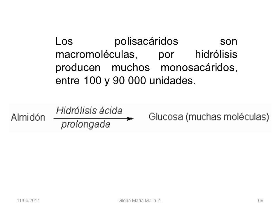 11/06/2014 Gloria Maria Mejia Z. 69 Los polisacáridos son macromoléculas, por hidrólisis producen muchos monosacáridos, entre 100 y 90 000 unidades.