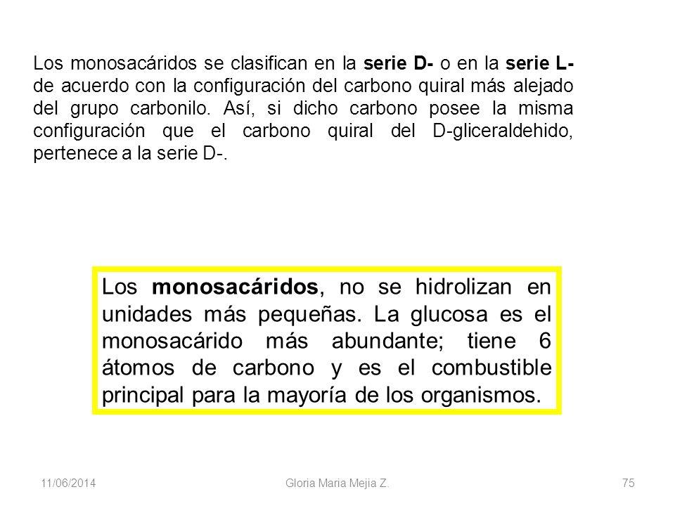11/06/2014 Gloria Maria Mejia Z. 75 Los monosacáridos, no se hidrolizan en unidades más pequeñas. La glucosa es el monosacárido más abundante; tiene 6