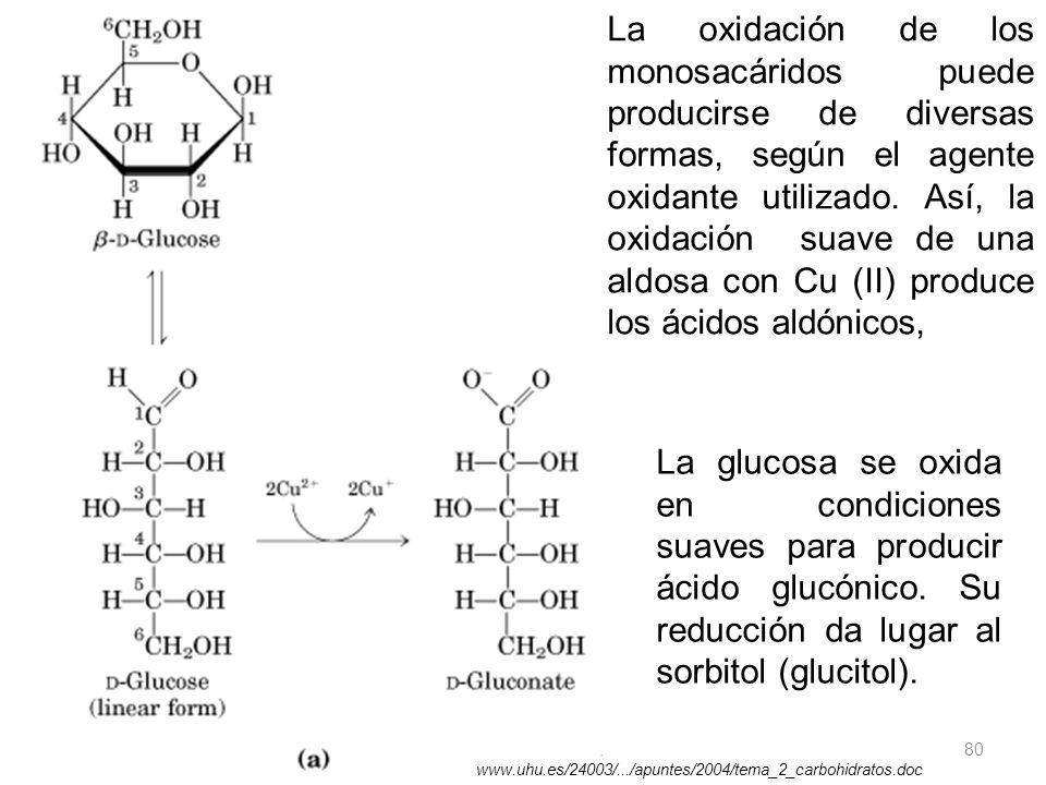 11/06/2014 Gloria Maria Mejia Z. 80 La oxidación de los monosacáridos puede producirse de diversas formas, según el agente oxidante utilizado. Así, la