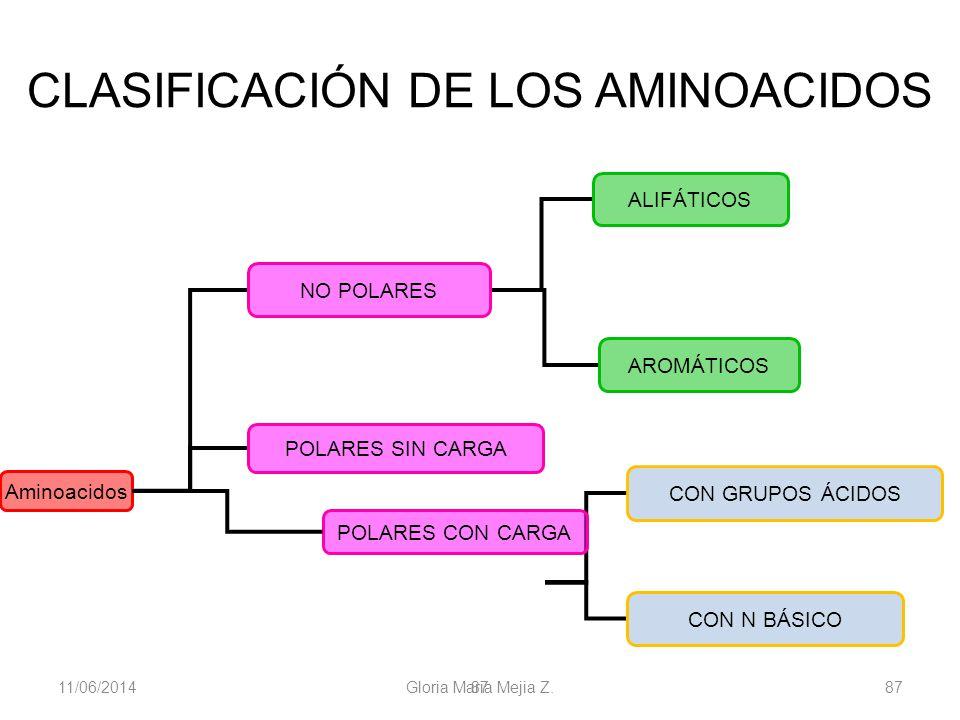 11/06/2014 Gloria Maria Mejia Z. 87 CLASIFICACIÓN DE LOS AMINOACIDOS Aminoacidos NO POLARES CON N BÁSICO ALIFÁTICOS AROMÁTICOS POLARES SIN CARGA CON G