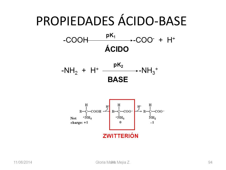 11/06/2014 Gloria Maria Mejia Z. 94 PROPIEDADES ÁCIDO-BASE -COOH -COO - + H + ÁCIDO pK 1 -NH 2 + H + -NH 3 + BASE pK 2 ZWITTERIÓN pK 1 pK 2