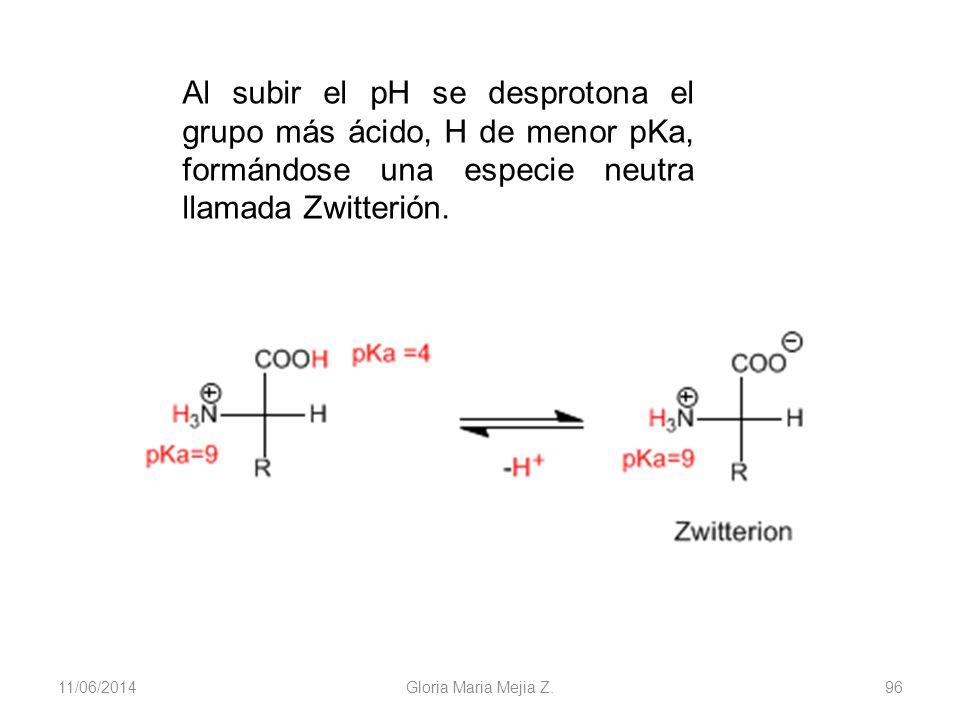 11/06/2014 Gloria Maria Mejia Z. 96 Al subir el pH se desprotona el grupo más ácido, H de menor pKa, formándose una especie neutra llamada Zwitterión.