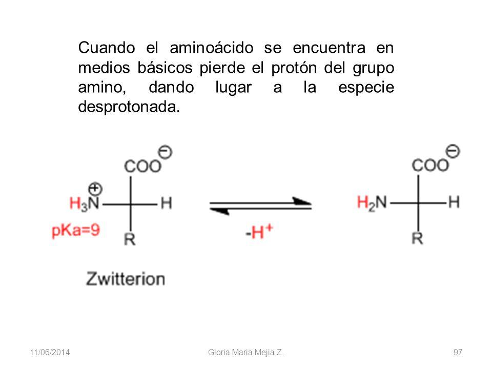11/06/2014 Gloria Maria Mejia Z. 97 Cuando el aminoácido se encuentra en medios básicos pierde el protón del grupo amino, dando lugar a la especie des