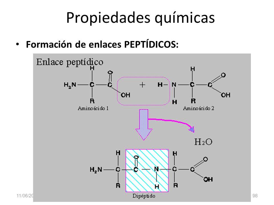 11/06/2014 98 Gloria Maria Mejia Z. Propiedades químicas Formación de enlaces PEPTÍDICOS: