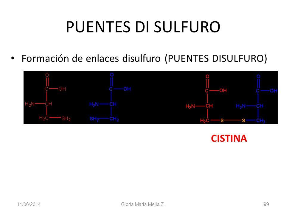 11/06/2014 99 Gloria Maria Mejia Z.99 PUENTES DI SULFURO Formación de enlaces disulfuro (PUENTES DISULFURO) CISTINA
