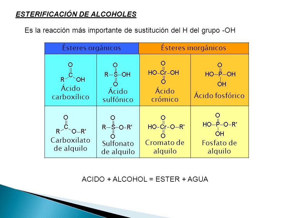 Los alcoholes pueden experimentar reacciones de deshidratación para formar alquenos, oxidaciones para dar cetonas y aldehídos, sustituciones para crea