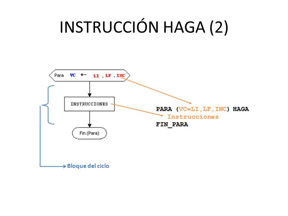 INSTRUCCIÓN HAGA (2)