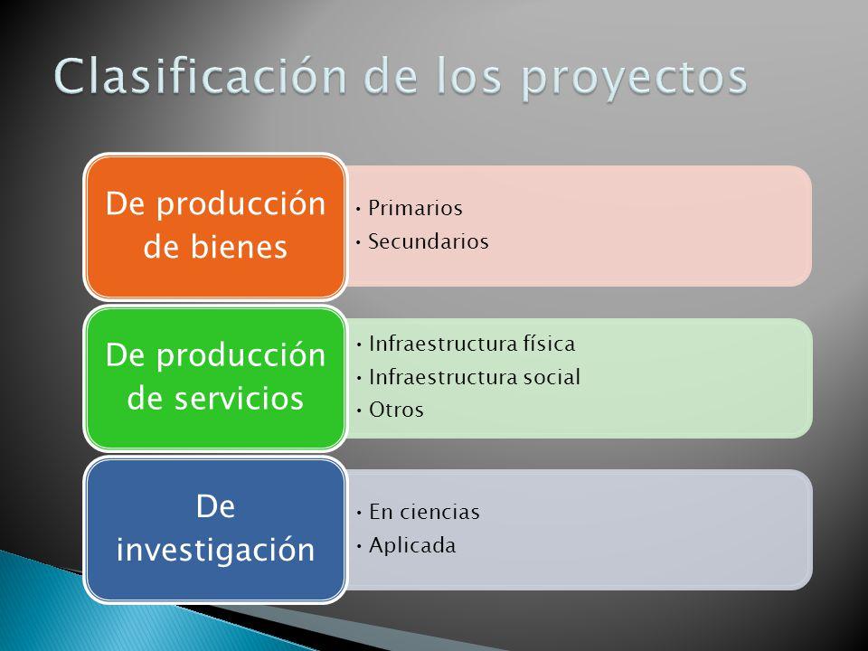 Primarios Secundarios De producción de bienes Infraestructura física Infraestructura social Otros De producción de servicios En ciencias Aplicada De i