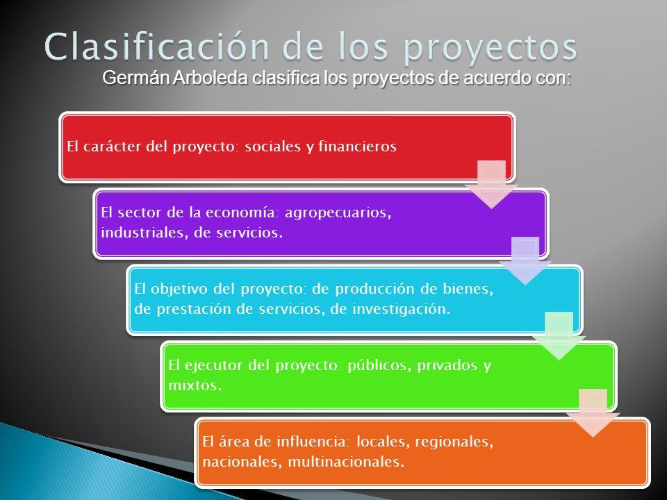 El carácter del proyecto: sociales y financieros El sector de la economía: agropecuarios, industriales, de servicios. El objetivo del proyecto: de pro