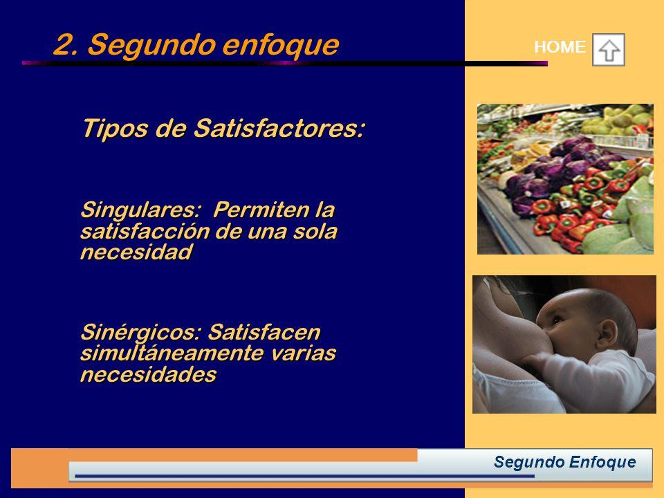 2. Segundo enfoque HOME Tipos de Satisfactores: Tipos de Satisfactores: Singulares: Permiten la satisfacción de una sola necesidad Singulares: Permite