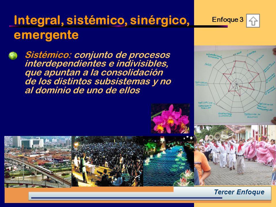 Integral, sistémico, sinérgico, emergente Enfoque 3 Tercer Enfoque Sistémico: conjunto de procesos interdependientes e indivisibles, que apuntan a la consolidación de los distintos subsistemas y no al dominio de uno de ellos