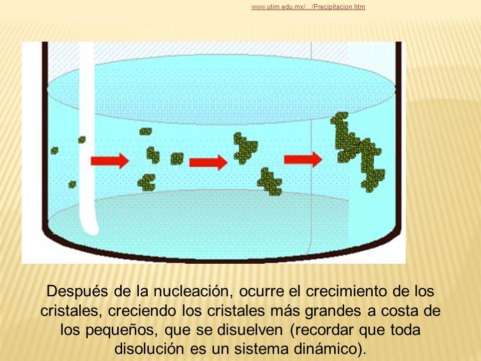 Después de la nucleación, ocurre el crecimiento de los cristales, creciendo los cristales más grandes a costa de los pequeños, que se disuelven (recor