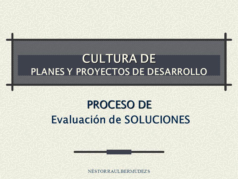NÈSTOR RAUL BERMÙDEZ S CULTURA DE CULTURA DE PLANES Y PROYECTOS DE DESARROLLO PROCESO DE Evaluación de SOLUCIONES