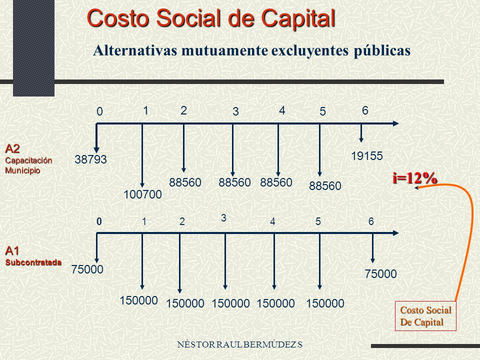 NÈSTOR RAUL BERMÙDEZ S Costo Social de Capital A1Subcontratada A2CapacitaciónMunicipio 38793 100700 88560 19155 75000 150000 75000 0 12 3 4 5 6 012 3