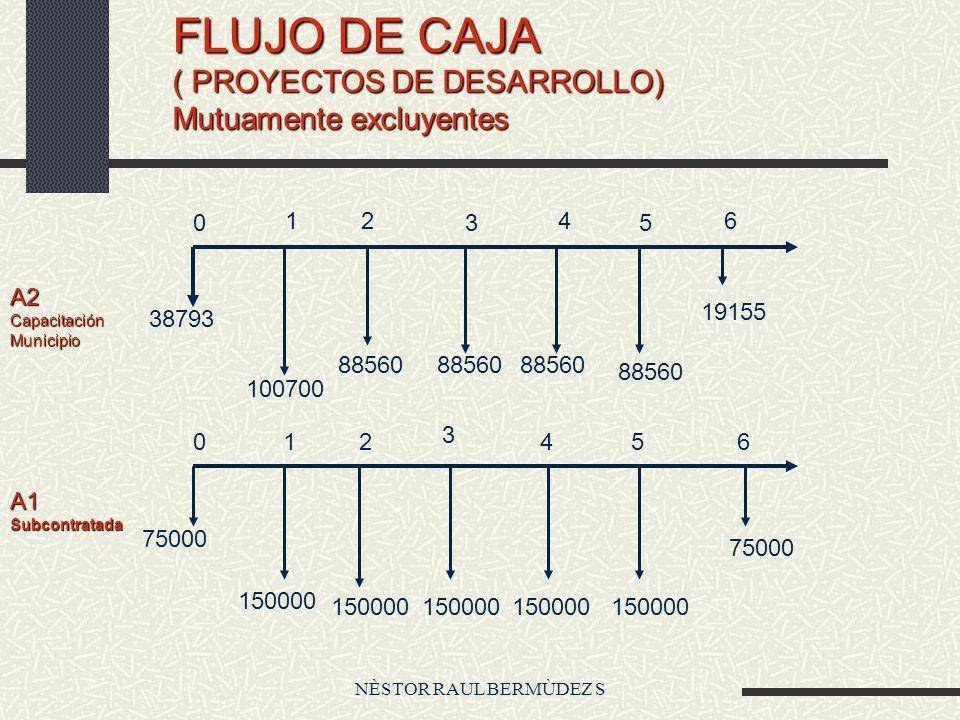 NÈSTOR RAUL BERMÙDEZ S FLUJO DE CAJA ( PROYECTOS DE DESARROLLO) Mutuamente excluyentes A1Subcontratada A2CapacitaciónMunicipio 38793 100700 88560 1915