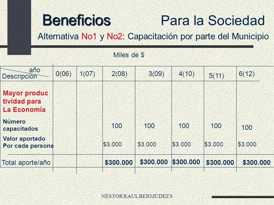 NÈSTOR RAUL BERMÙDEZ S Beneficios Para la Sociedad Alternativa No1 y No2: Capacitación por parte del Municipio Miles de $ Descripción año 0(06)1(07)2(
