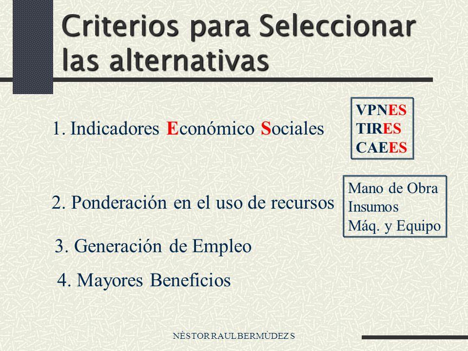 NÈSTOR RAUL BERMÙDEZ S Criterios para Seleccionar las alternativas 1. Indicadores Económico Sociales VPNES TIRES CAEES 2. Ponderación en el uso de rec
