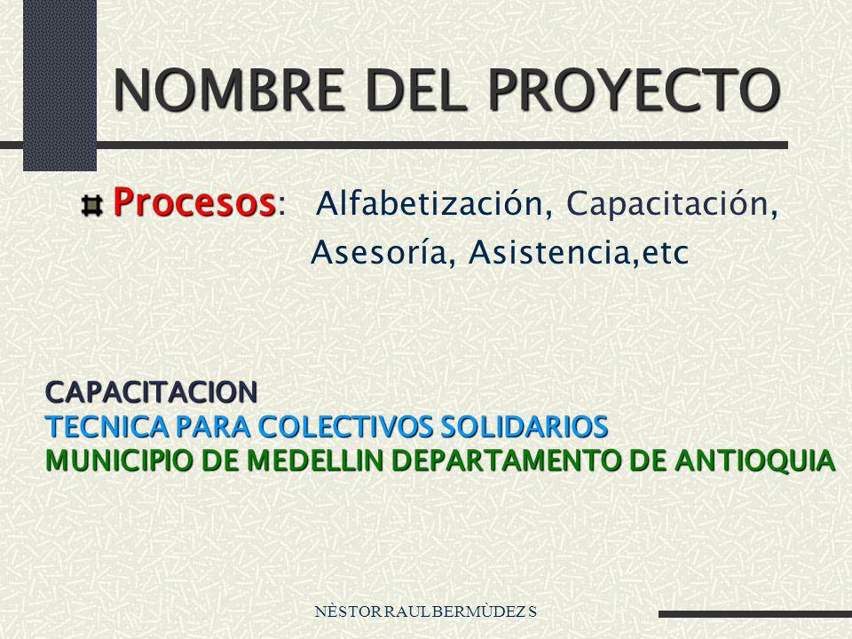 NÈSTOR RAUL BERMÙDEZ S NOMBRE DEL PROYECTO Procesos Procesos : Alfabetización, Capacitación, Asesoría, Asistencia,etc CAPACITACION TECNICA PARA COLECT