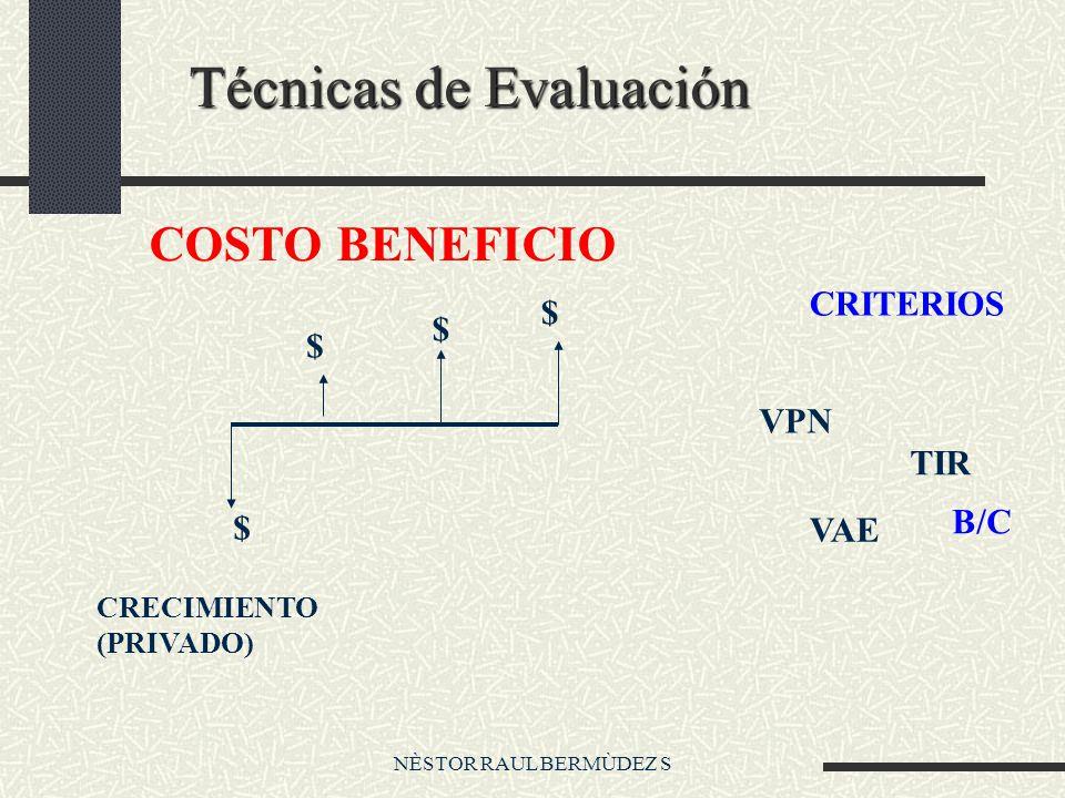 NÈSTOR RAUL BERMÙDEZ S Técnicas de Evaluación COSTO BENEFICIO $ $ $ $ CRECIMIENTO (PRIVADO) CRITERIOS VPN TIR VAE B/C