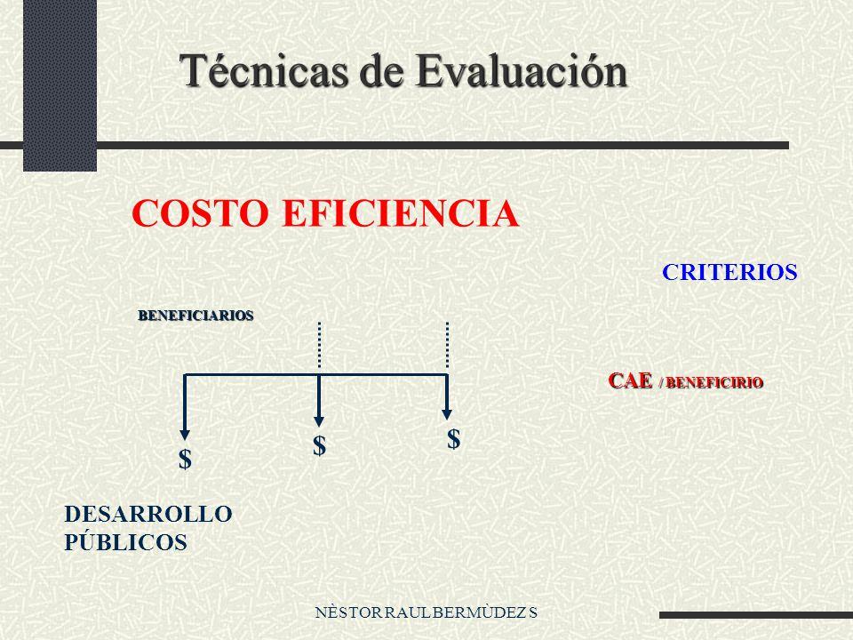 NÈSTOR RAUL BERMÙDEZ S Técnicas de Evaluación COSTO EFICIENCIA $ $ $ BENEFICIARIOS DESARROLLO PÚBLICOS CRITERIOS CAE / BENEFICIRIO