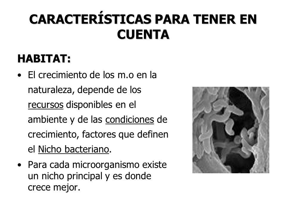 CARACTERÍSTICAS PARA TENER EN CUENTA HABITAT: El crecimiento de los m.o en la naturaleza, depende de los recursos disponibles en el ambiente y de las condiciones de crecimiento, factores que definen el Nicho bacteriano.