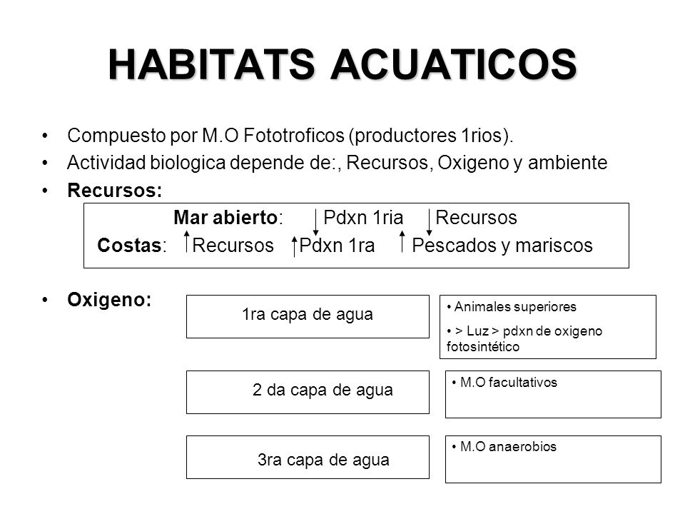 HABITATS ACUATICOS RIOS CERCA A LA ORILLA Cantidad de Mat.