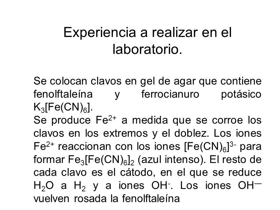 Experiencia a realizar en el laboratorio. Se colocan clavos en gel de agar que contiene fenolftaleína y ferrocianuro potásico K 3 [Fe(CN) 6 ]. Se prod