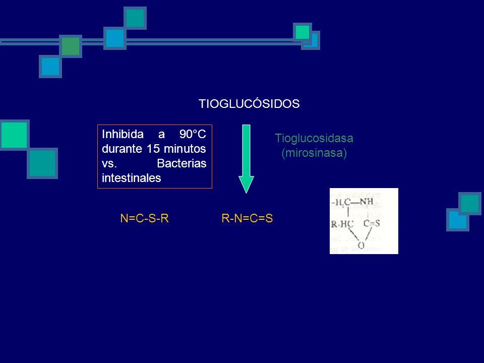 TIOGLUCÓSIDOS R-N=C=SN=C-S-R Tioglucosidasa (mirosinasa) Inhibida a 90°C durante 15 minutos vs.