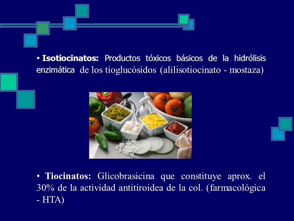 Isotiocinatos: Productos tóxicos básicos de la hidrólisis enzimática de los tioglucósidos (alilisotiocinato - mostaza) Tiocinatos: Glicobrasicina que constituye aprox.