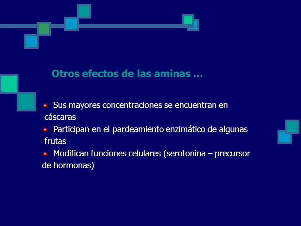Otros efectos de las aminas … Sus mayores concentraciones se encuentran en cáscaras Participan en el pardeamiento enzimático de algunas frutas Modifican funciones celulares (serotonina – precursor de hormonas)